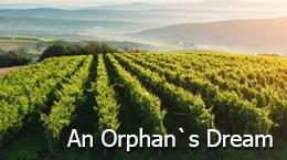 An Orphan`s Ddream.jpg